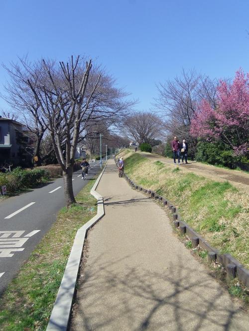 続 自転車に乗って/武蔵野の面影を探そう