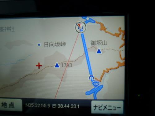 富士山ぐるっと一周 河津桜と金目の煮付け