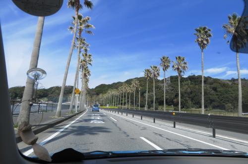 早春の千葉をドライブ~里山カフェで一息、昼食は金谷港でアナゴ丼!