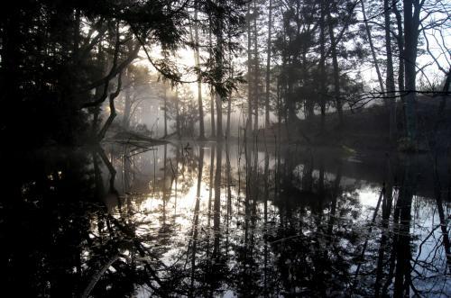 ◆福島・四季・彩々・Part,53・早春の候