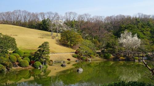 万博公園桜まつり(2) 朝一番の日本庭園。