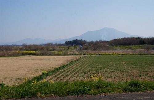 茨城の桃源郷 古河桃まつり&アフターヨシ焼きの渡良瀬遊水地