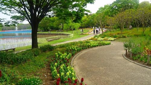 長居公園(2) 植物園の園内散策 下巻