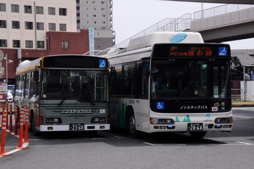 春富士を観に駿河路へ【2】~田貫湖一周と駒止の桜~