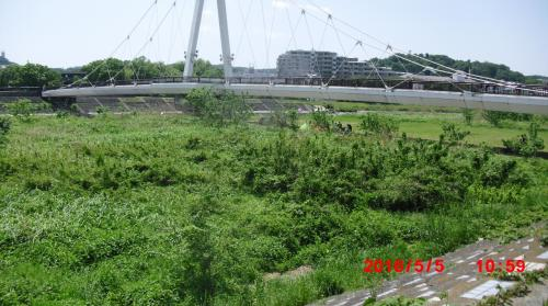 ☆tamatosi monorail 0ne day going☆