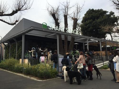 2016 MAR 日本初上陸から半年 SHAKE SHACKはまだ激混みだった