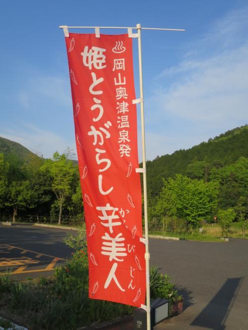 2016 GW 晴れらんまん おかやまの旅<第2日>奥津渓→奥津温泉