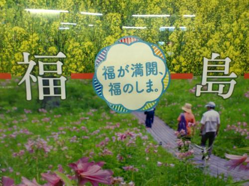 塙町・風呂山公園の山ツツジを見に訪れてみた