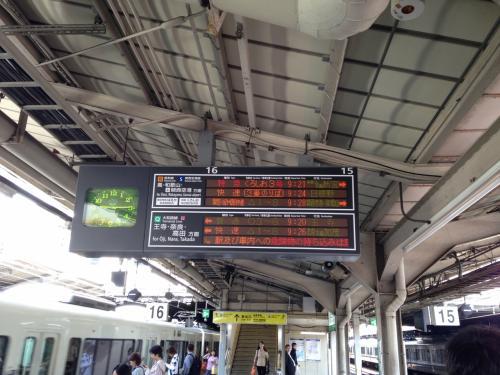 念願の熊野古道と熊野三山へ。西国三十三所めぐり始めました!