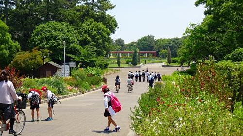 服部緑地 円形花壇見学後、娘を吹田病院へ送迎。
