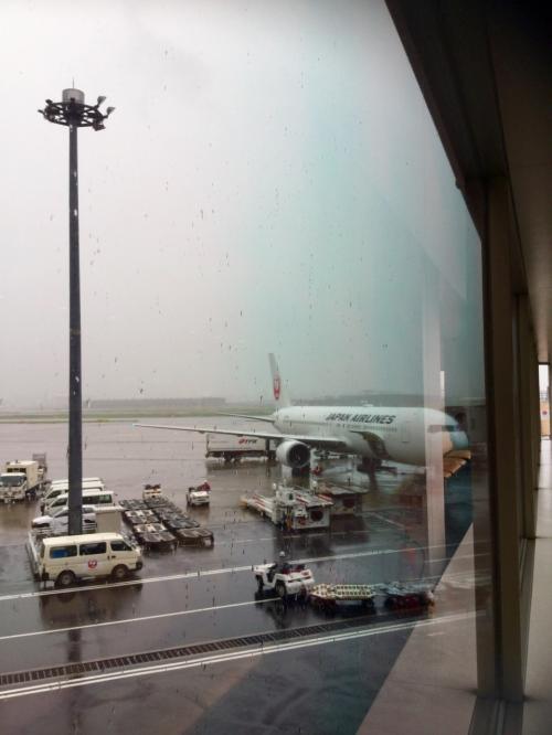 そして再び九州《  博多~鹿児島~博多 》