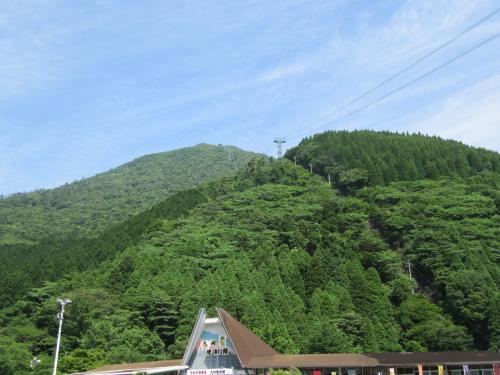 ミヤマキリシマの群生がとてもきれいでした