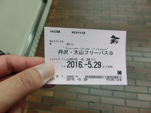 2016春 新緑の塔ノ岳: 曇り空に幻想的な富士山の眺望 ヤビツ峠→大倉