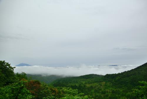 新緑の青森でマイナスイオンを全身に浴びて…蔦沼~奥入瀬~白神山地で梅雨を感じる。