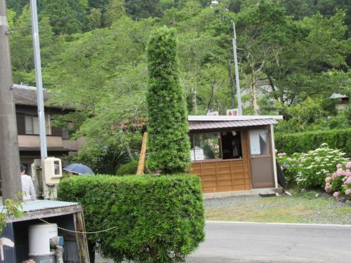 遠州の小京都を訪ねて~極楽寺、通称あじさい寺~