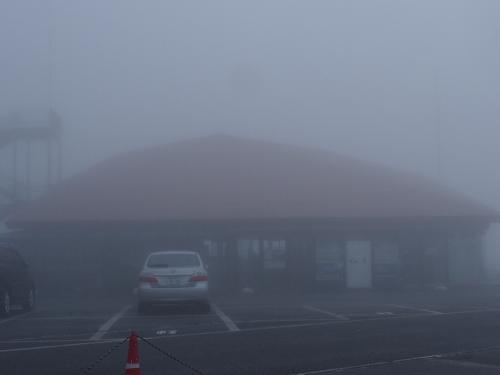 散策気分で 伊吹山。 人生初めての登山は 濃霧。