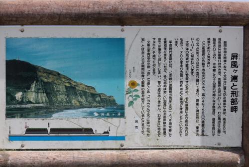 飯岡漁港でバードウォッチング [2012](1)