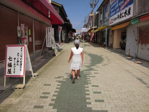 夏の家族旅行2日目 福井 東尋坊 と 恐竜博物館