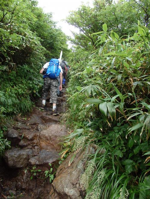 秋田駒ヶ岳登山 改新花の百名山 高山植物を求め