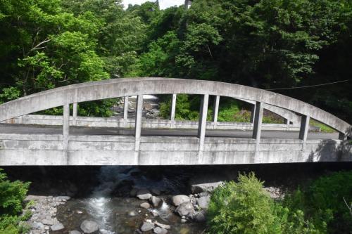 大糸線山岳車窓とアルプスあづみの公園の夏木立散策(長野)