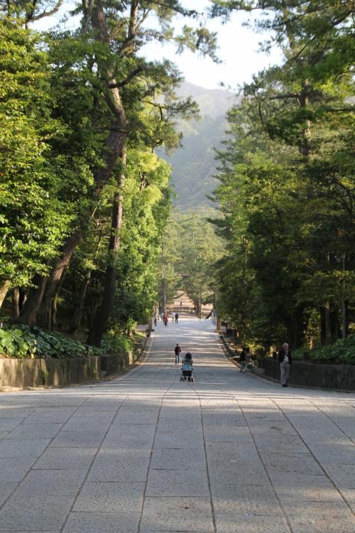 山陰方面【4/4】山口/島根を巡る --駆け巡り駆け上がる島根/鳥取メジャースポット--