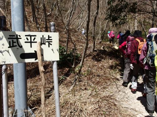 鈴鹿の春が好き♪ 御在所岳を登る&愛知県緑化センターの花