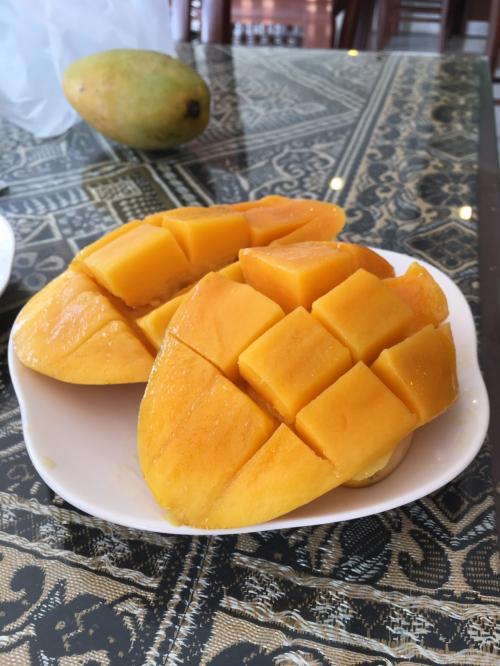 시장에서 산 망고.  밖은 녹색이지만 속은 보통 노란색.  크고 지금까지 먹은 해외 망고에서 가장 맛있다.