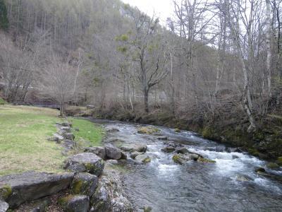 長野県 長者の森 の写真g28773