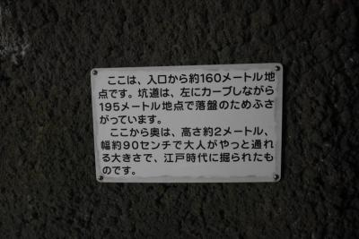 Lrg_50900737