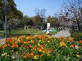 鹿児島県の写真