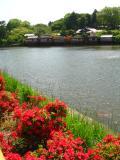 宇治市の写真