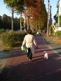 浦和市の写真