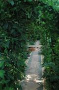 群馬県の写真