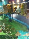 品川の写真