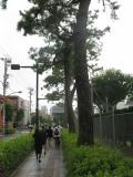 府中市の写真