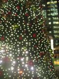 赤坂の写真