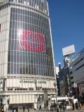 渋谷の写真