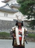 小田原の写真