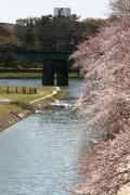 愛知県の写真