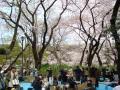 吉祥寺の写真