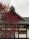 加古川市の写真