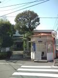 浅草の写真