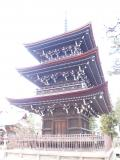 高山市の写真