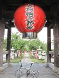 越谷市の写真