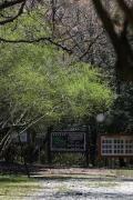 豊橋市の写真