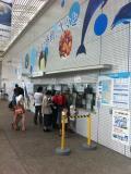 名古屋港水族館★水族館めぐり