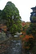 2013年黒川温泉・高千穂・湯布院3泊4日 温泉と紅葉とドライブ - 2日目 高千穂