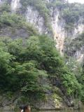岩手県の写真