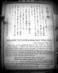 江戸・柳 情緒.....(吉原大門/浅草)