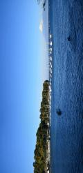 沼津市の写真